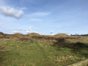 Post image for Bronze Age Chichester – The Devil's Jumps